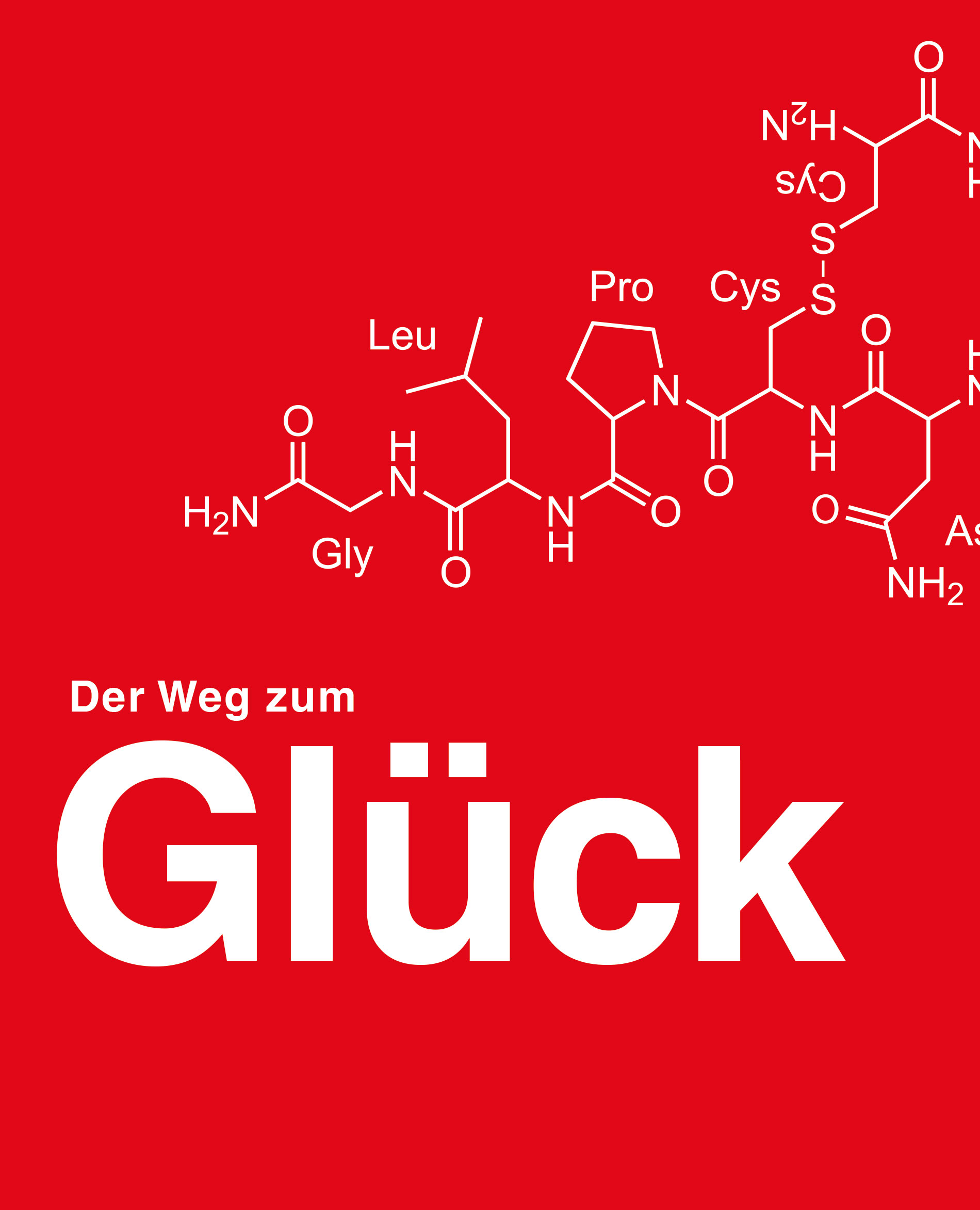 Carl-Roth-Der-Weg-zum-Glueck