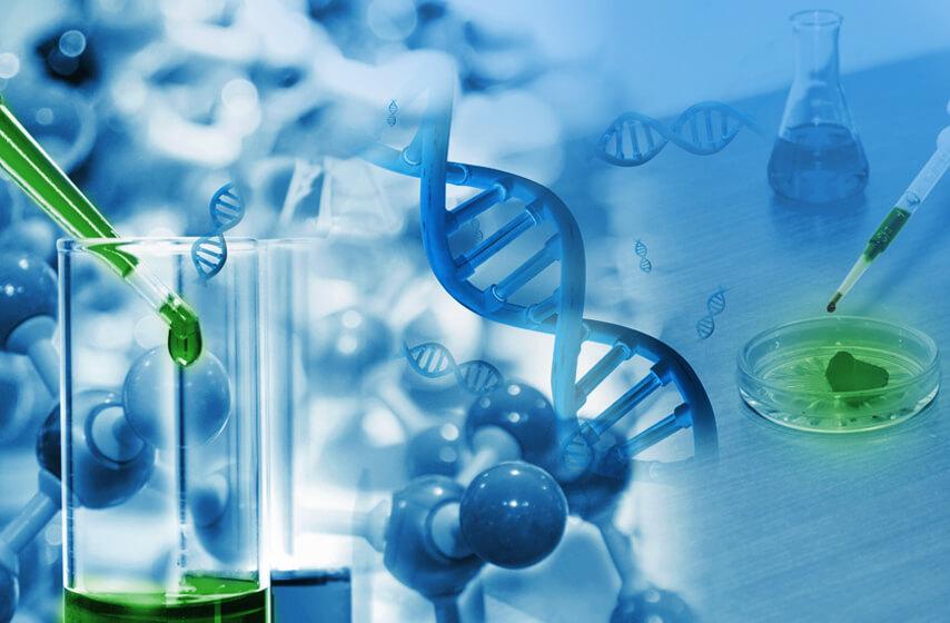 Carl-Roth-Biotechnologie