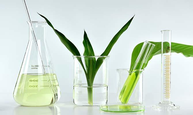 Nachhaltige Chemie: Innovationen an der Basis
