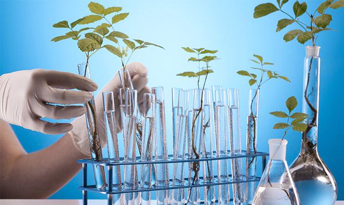 12 Prinzipien der grünen Chemie